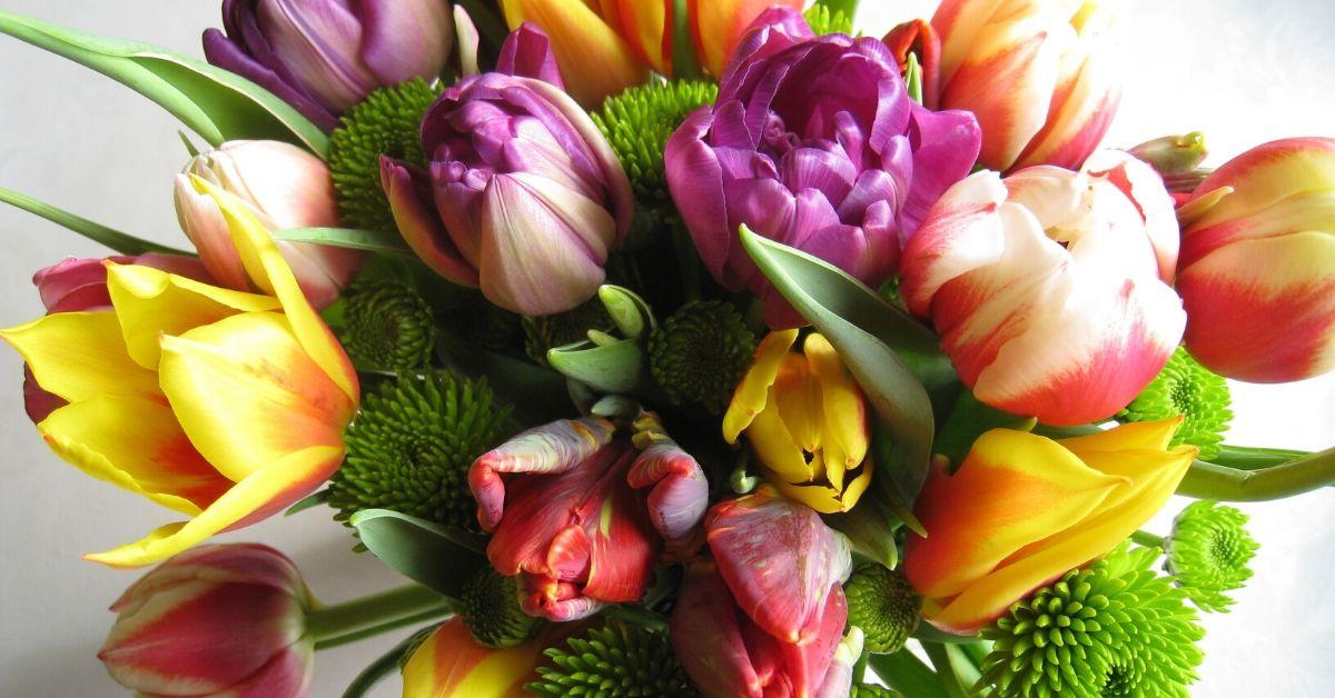 Χρώμα λουλουδιών Σημασία